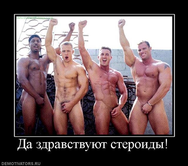 120689_da-zdravstvuyut-steroidyi.jpg